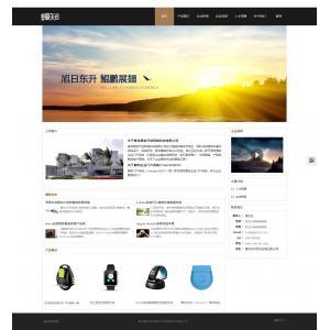科技类企业网站