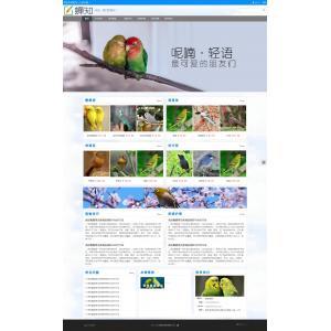 宠物网站模板