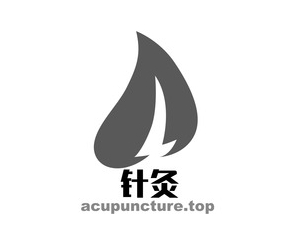 acupuncture.top