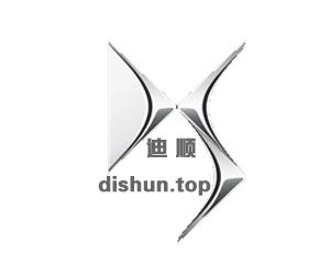 dishun.top
