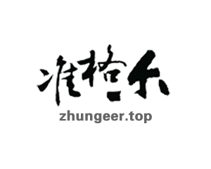zhungeer.top