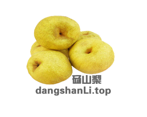 dangshanLi.top