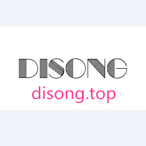 disong.top