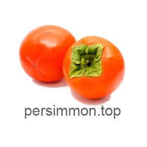 persimmon.top