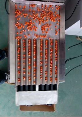 种子在线数粒仪
